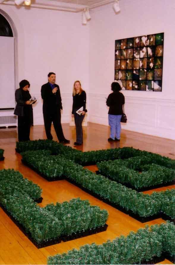 Arianne Littman LandEscapes installation